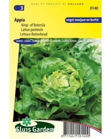 SL0140 Laitue Appia